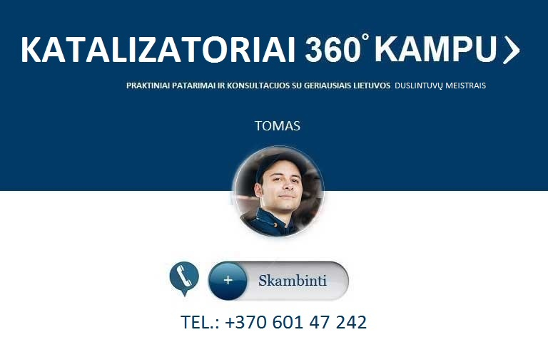 Kas parduoda pigiai katalizatorius Vilniaus mieste