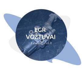 egr-voztuvai-isprogramavimas-keitimas